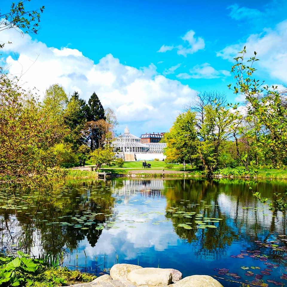 viaggiare-zaino-in-spalla-giardino-botanico-copenaghen-2
