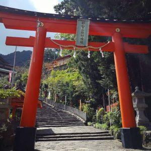 viaggiare-zaino-in-spalla-torii-nachi-taisha