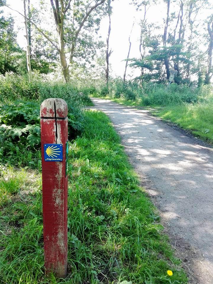 viaggiare-zaino-in-spalla-pilgrimsrute-concha-sul-sentiero-2
