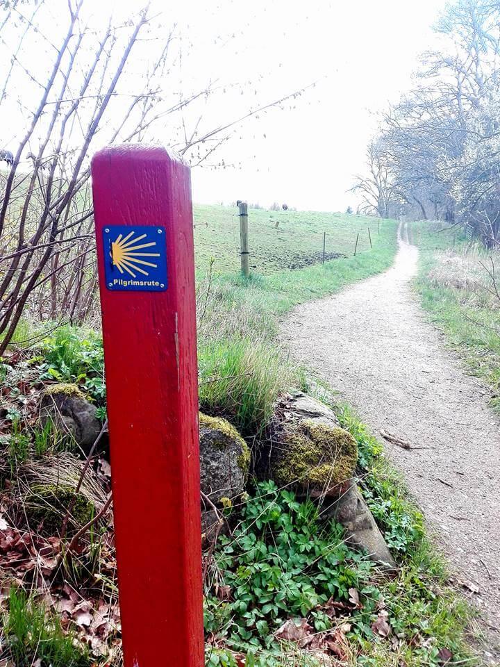 viaggiare-zaino-in-spalla-pilgrimsrute-concha-sul-sentiero