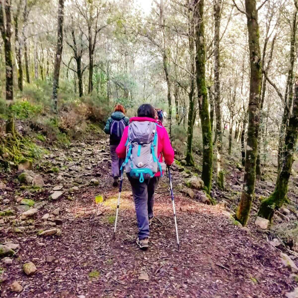 viaggiare-zaino-in-spalla-trekking-is-cannoneris-sardegna