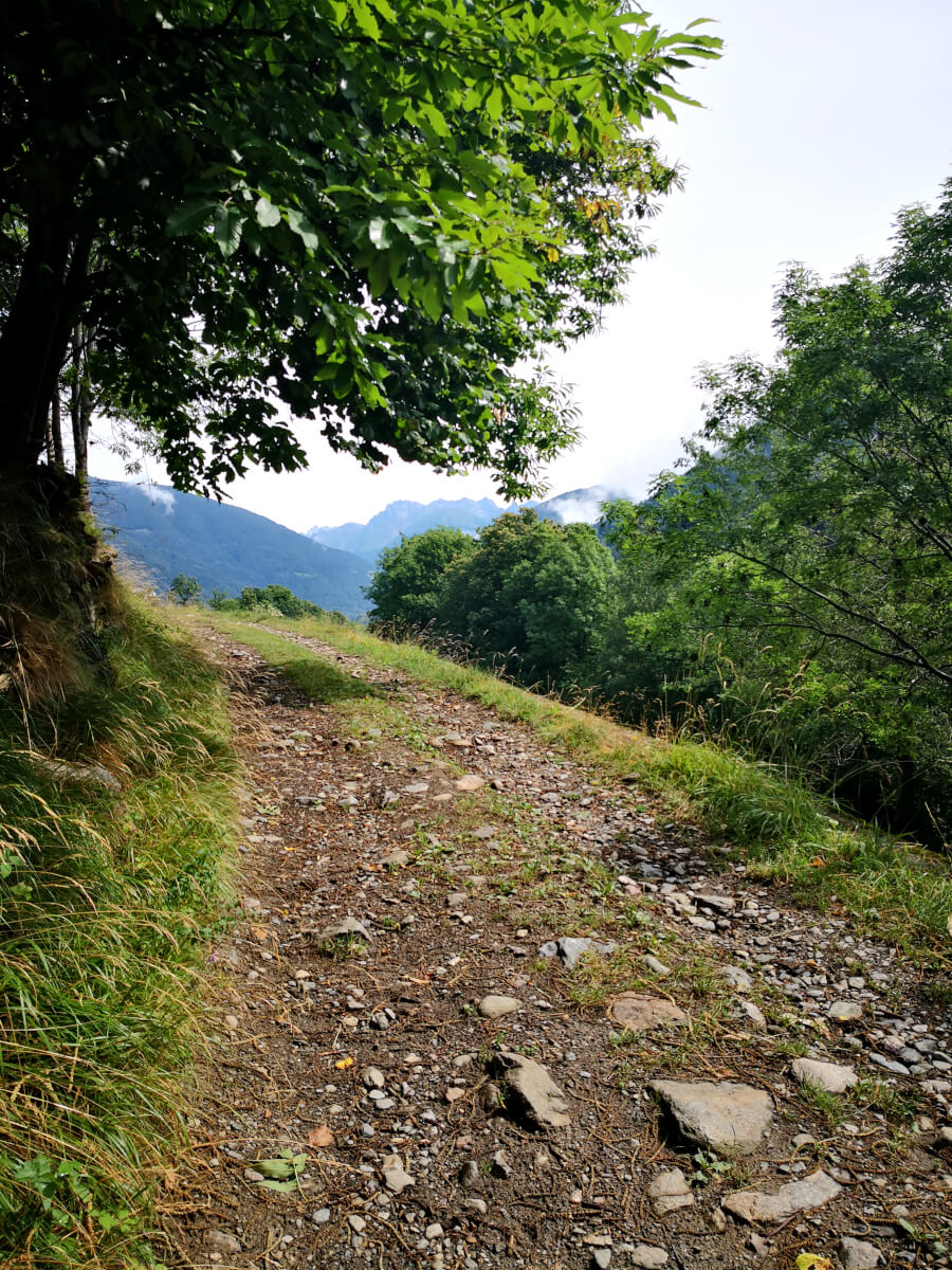 sentiero di montagna in valle camonica
