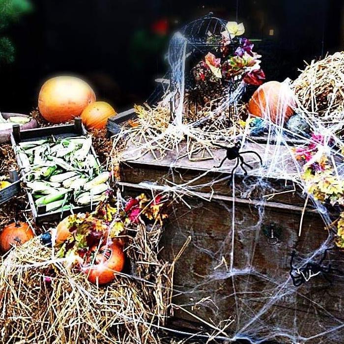 viaggiare-zaino-in-spalla-halloween-danimarca-addobbi