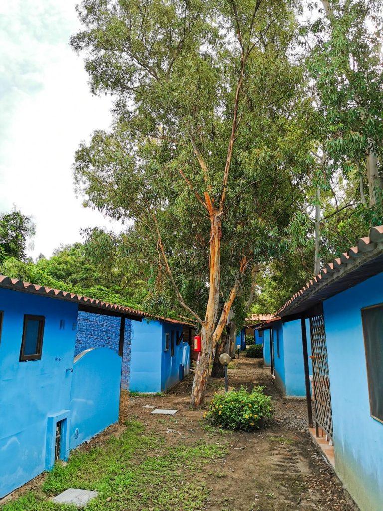 bungalow Camping Village Orri